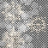 Falling Shining Snowflakes and Snow on Transparent Background. C Stock Photography