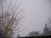 Falling snow. With flash royalty free stock images