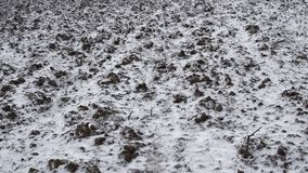 Falling snow on a background of plowed soil in the field. Winter has come stock video