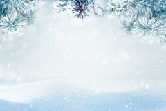 Free Falling Snow On Pine Tree Branches Royalty Free Stock Photos - 161324228