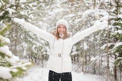 Falling Snow Stock Photo