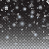 Falling snow on a transparent background. Stock Photo
