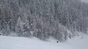 Falling snow in winter stock video