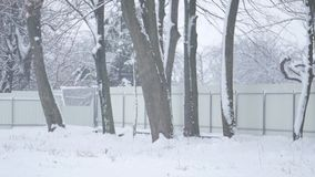 Falling snow in a winter park with snow covered trees stock footage
