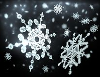 Falling snowflakes Stock Images