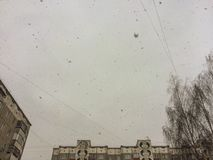 Falling snowflakes. In the city. Look up stock images