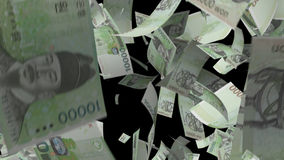 Falling South Korea Money stock footage