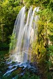Falling Springs Waterfall, Covington, Virginia. A vertical image of Falling Springs Waterfall located Alleghany Mountains of George Washington National Forest royalty free stock images