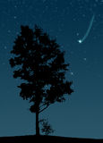 Falling star. At night sky