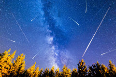 Falling stars pine trees Milky Way Royalty Free Stock Photos