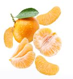 Falling tangerine and tangerine slices. Stock Image