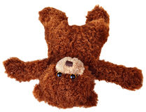 Falling teddy bear Stock Images