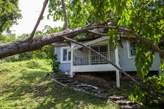 Falling tree after hard storm on damage house Royalty Free Stock Photography