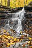Falling Water, Falling Leaves Royalty Free Stock Images