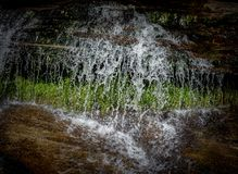 Falling water freeze framed creating lacelike designs. In forest Royalty Free Stock Images