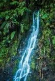 Falling Waters Stock Image