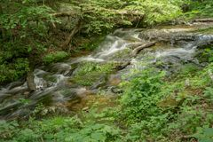 Fallingwaterkreek op Blauw Ridge Parkway wordt gevestigd dat royalty-vrije stock fotografie