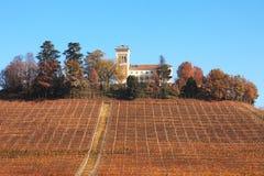 fallkullitaly nordlig piedmont vingård arkivbilder