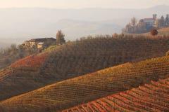 fallkullitaly piedmont vingårdar arkivbilder