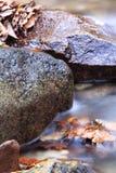 Falllandschaft im Wald mit Flussbachwasser und Felsen und tote Blätter Stockfoto