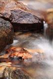Falllandschaft im Wald mit Flussbachwasser und Felsen und tote Blätter Lizenzfreie Stockbilder