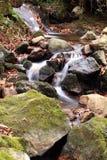 Falllandschaft im Wald mit Wasserfallfluß und -felsen Stockbild