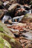 Falllandschaft im Wald mit Wasserfallfluß und -felsen Lizenzfreies Stockfoto