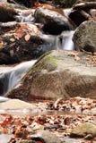 Falllandschaft im Wald mit Wasserfallfluß und -felsen Stockfotografie