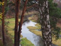 Falllandschaft, Reflexion des Waldes im Fluss lizenzfreies stockbild