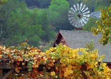 falllantgård royaltyfri fotografi