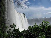 Fallls di Iguassu Fotografia Stock