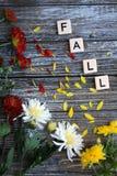 Fallmamablumen in einem Rahmen mit Wörtern fallen lizenzfreie stockbilder