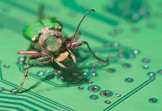 Fallo de funcionamiento verde del ordenador Imagen de archivo