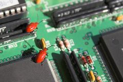 Insectos del ordenador fotos de archivo