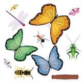 Fallos de funcionamiento y mariposas Imagen de archivo libre de regalías