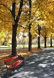 fallpark royaltyfria foton