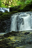 Falls. Beautiful clean waterfall scene in a lush green environment Stock Photos