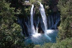 Falls at Burney Fall Stock Images