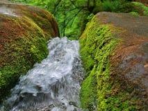 Falls in Carpathians Stock Images