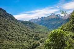 Falls Creek Valley in Fiordland National Park, New Zealand. Pop`s View Lokout and Hollyford Valley track with the mountain peaks in the background on the way to Royalty Free Stock Photos