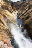 falls fäller ned yellowstone Arkivbild