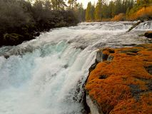 Falls in the Fall. Dillon Falls on the Deschutes River near Bend, OR stock image