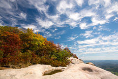 Falls foliage and blue sky Stock Photography