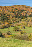 Falls foliage and little hut in Vermont countryside Royalty Free Stock Photography