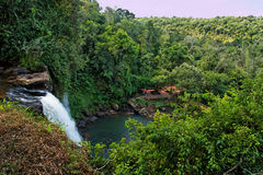 Falls in Foz do Iguacu Argentina Brazil Stock Image