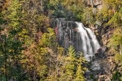 falls full view whitewater Στοκ Εικόνες