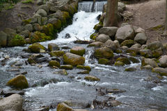 Falls in Gdansk Olive park, Poland Royalty Free Stock Photo