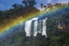Falls with Green Plants and Treen and Rainbow in Iguazu, Brazil royalty free stock photography