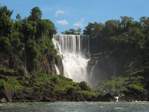 Falls Iguasu in Argentina. Wonder of the world. Stock Photo