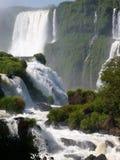 falls iguazu Στοκ φωτογραφία με δικαίωμα ελεύθερης χρήσης